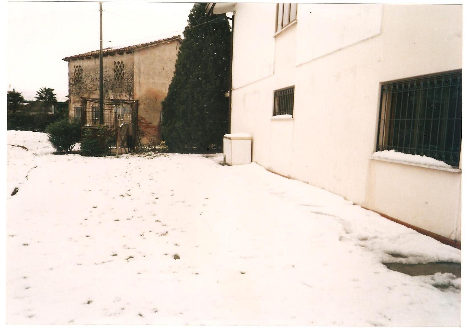 Clicca l'immagine per ingrandirla.  Nome: snow 5.jpg Visualizzazioni: 47 Dimensione: 447.7 KB ID: 28154