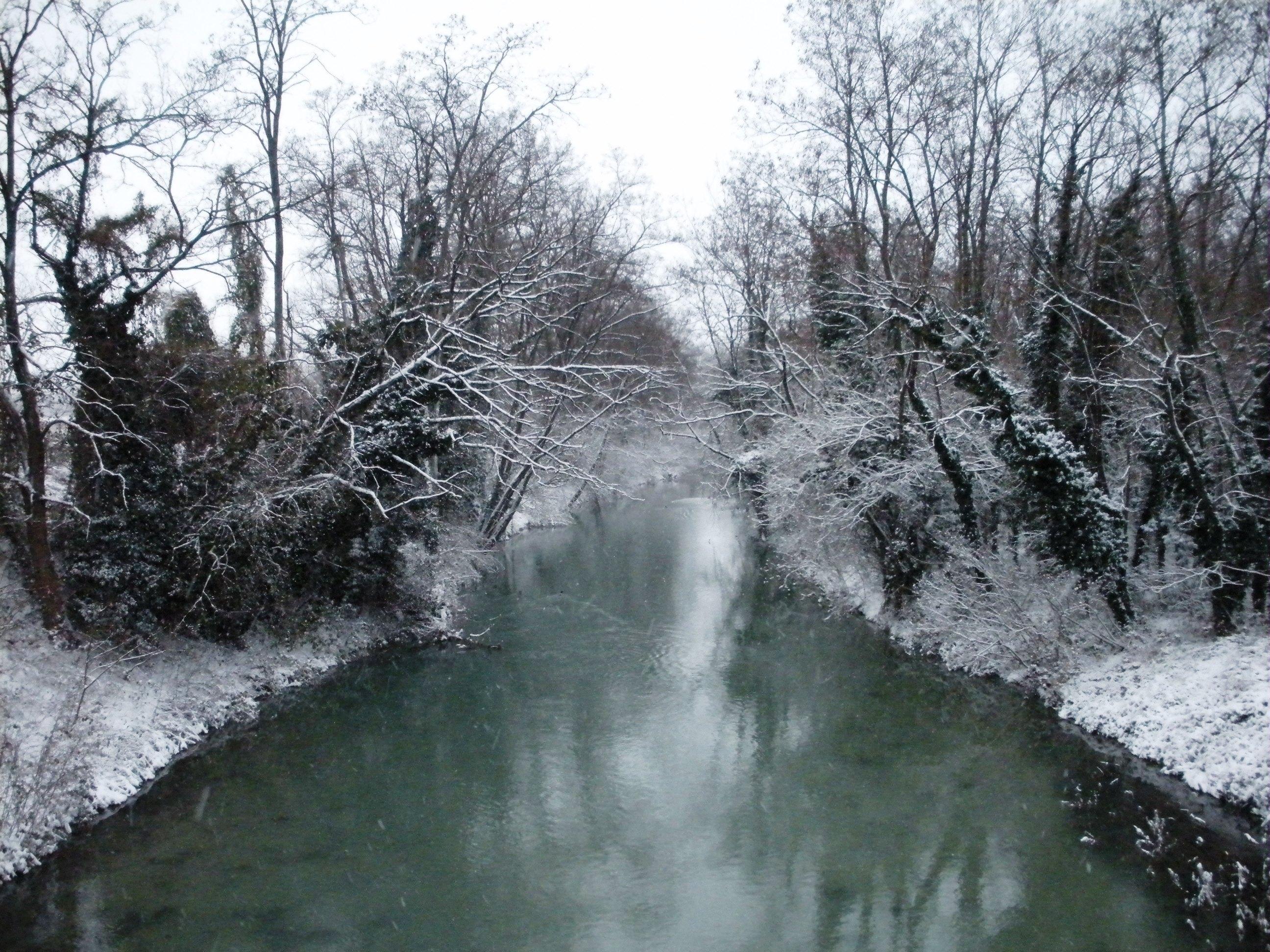 Clicca l'immagine per ingrandirla.  Nome: Nevicata 19 12 2009 (19).jpg Visualizzazioni: 104 Dimensione: 1.16 MB ID: 47977