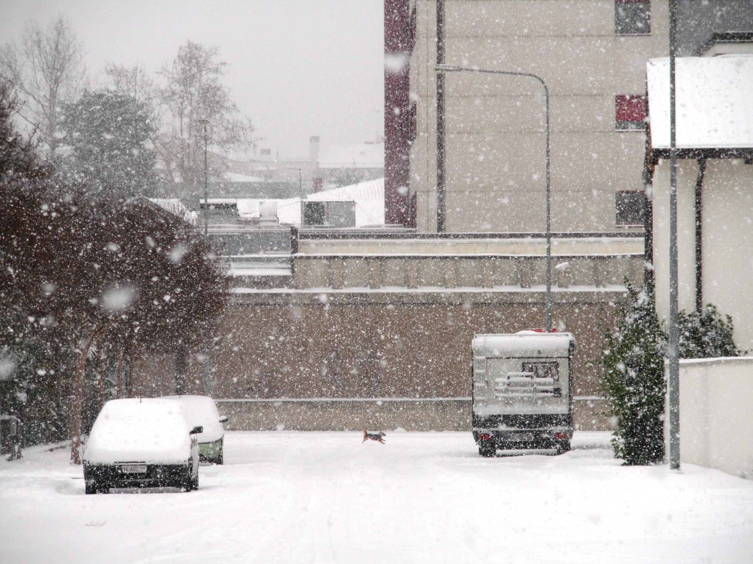 Clicca l'immagine per ingrandirla.  Nome: Nevicata 19 12 2009 (55).jpg Visualizzazioni: 101 Dimensione: 1.24 MB ID: 47983
