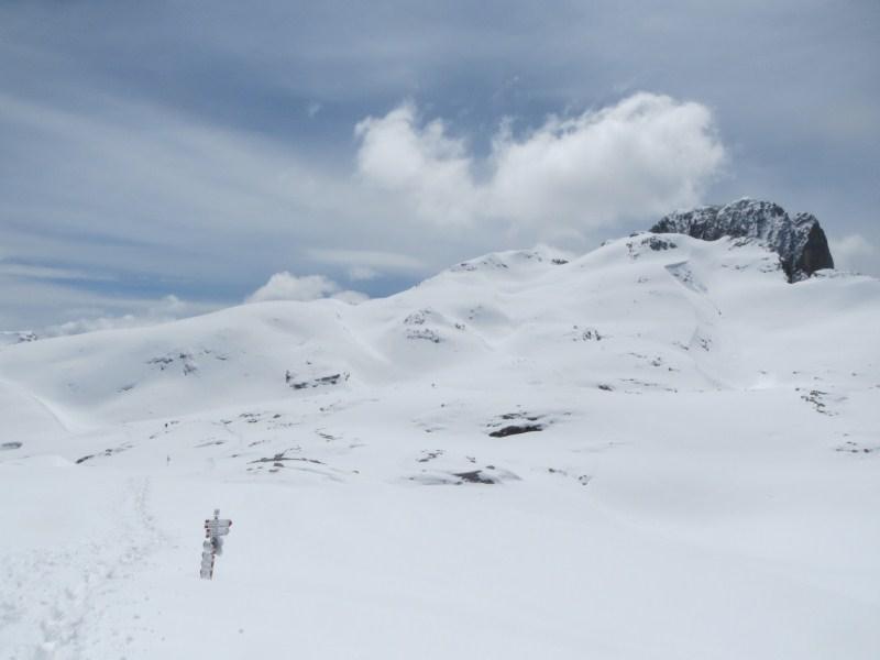 Clicca l'immagine per ingrandirla.  Nome: pale neve 29 giugno 054.jpg Visualizzazioni: 72 Dimensione: 43.8 KB ID: 35082